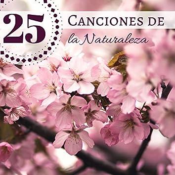 25 Canciones de la Naturaleza - Sonidos de la Naturaleza y Ruido Blanco para Relajación Profunda y Meditación