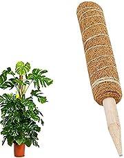 Bastoncini di supporto per piante in legno verde KSS con legami regolabili 100, 30 in bamb/ù supporto per piante floreali