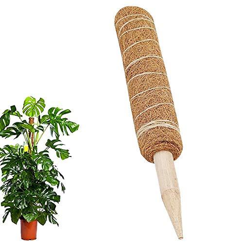 ATopoler Totem Stab aus Kokosfaser, 45 cm, Stange für Pflanzen, Rankhilfe für Zimmerpflanzen, 1 Stück