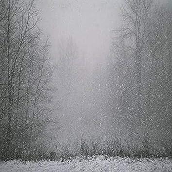 Solstice Snow