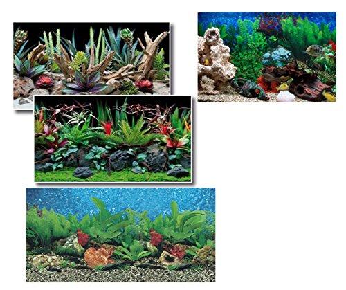 Takestop Toile de fond pour aquarium 50 x 115 cm, films d'images extérieures fantaisie aléatoire