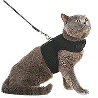 Arnés y correa para gato BINGPET, a prueba de escapes, arnés de malla tipo chaleco, ajustable y suave para pasear al gato.