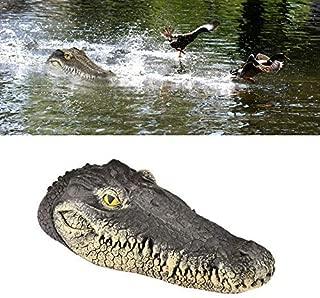 alligator pool thermometer