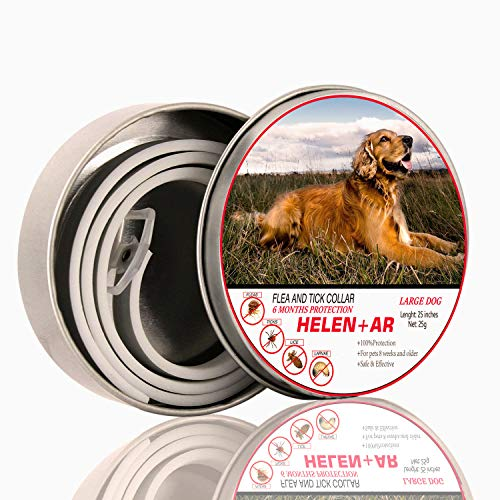 COLLAR FOR DOGS ! 6 Months Protection ! One size fits all ! waterproof ! Adjustable dog collar