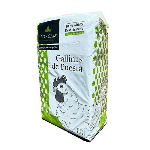 Cominter Bala de Alfalfa deshidratada para gallinas de Puesta