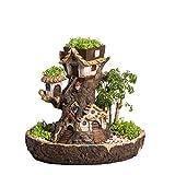 NCYP 10.5inches Forest Fairy Garden Miniature Stump...