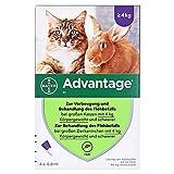 ADVANTAGE 80 mg f. große Katzen