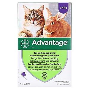 ADVANTAGE 80 mg f. große Katzen 4