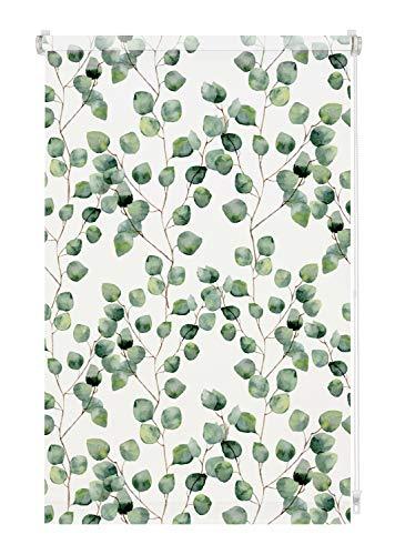 GARDINIA Rollo Digiprint Isabella zum Klemmen, Tageslicht-Rollo mit Digitaldruck, Blickdicht, Alle Montage-Teile inklusive, Weiß/Dekor, 80 x 150 cm (BxH)