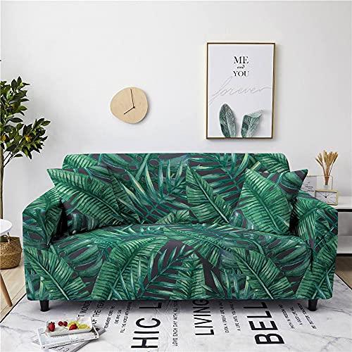Meiju Fundas de Sofá Elasticas de 1 2 3 4 Plazas Universal Decorativas Funda Cubre Sofas Ajustables, Antideslizante Protector Cubierta de Muebles (Vegetación Tropical,2 plazas - 145-185cm)