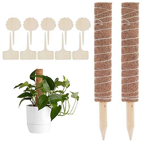 2 Stück Pflanzstab Kokos Rankstab Rankhilfe Blumenstab mit 10 Holzetiketten für Pflanzenname Pflanzzeit Kokosstab Stützpfahl Holz aus Natürlicher Kokosfaser zur Dekoration Verlängerbar 70CM Moosstab