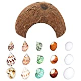 Hermit Crab Shells/Turbo Shells/15Pcs Assorted Turbo Shells and 1Pcs Natural Coconut Hide Reptile Hideouts/Seashell Opening Size 0.78'-1.57'-Handpicked Turbo Growth Seashell Natural Sea Conch (16 Pcs)