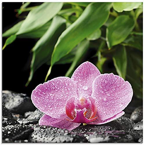 Artland Glasbilder Wandbild Glas Bild einteilig 50x50 cm Quadratisch Natur Asien Botanik Blumen Orchidee Steine Zen Entspannung Pink T5OQ