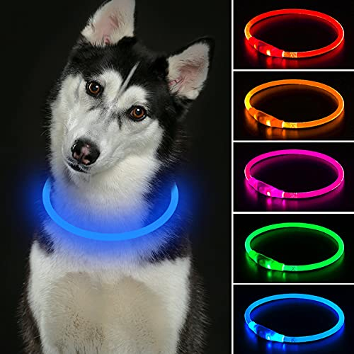Collar de perro LED Mini USB recargable TPU con luz de seguridad para mascotas resistente al agua, collares básicos para perros pequeños, medianos y grandes (azul)