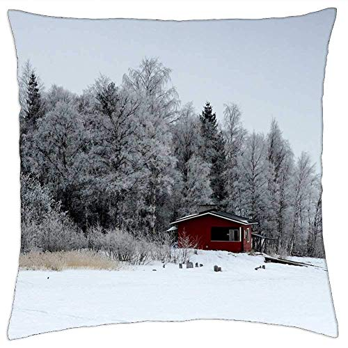 BXBX Throw Pillow Cover (18x18 Inch) - Finlandia Paisaje Escénico Bosque Árboles Bosques