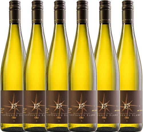 VINELLO 6er Weinpaket Weißwein - Sauvignon Blanc 2019 - Ellermann-Spiegel mit Weinausgießer | trockener Weißwein | deutscher Sommerwein aus der Pfalz | 6 x 0,75 Liter