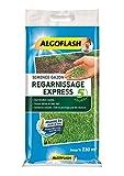 ALGOFLASH Semence Gazon Regarnissage Express 5 jour, 5 kg, SEMEX5