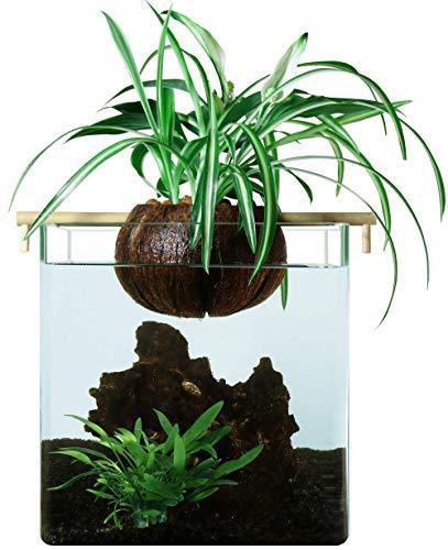 COCOPLANT Cocogarden Filtre sans pompe aquarium 10L sans couvercle aquaponie