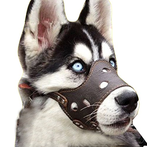 Kwan Adjustable Leather Dog Muzzle Anti Barking Biting Chewing for Small Large Breed Breathable Allows Drinking (XL)