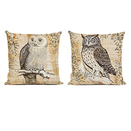 Farmhouse Owl Decorative Pillow Covers