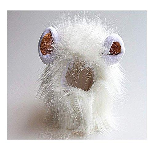 Morbuy Reizende Katzenkostüm Hunde Haustier Löwenkostüm Kleidung, Haustier Kostüme Kleidung Katze lustiges Hunde Katze Halloween Karneval Cosplay (Weiß)