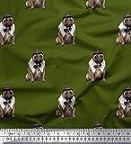 Soimoi Grun Baumwolle Ente Stoff Bogen, Hut & Mops Hund