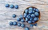 ZJZNB Peinture par Numéros Blueberry Bricolage pour Enfants Adultes Étudiants Débutants 16X20 Pouces (sans Cadre)