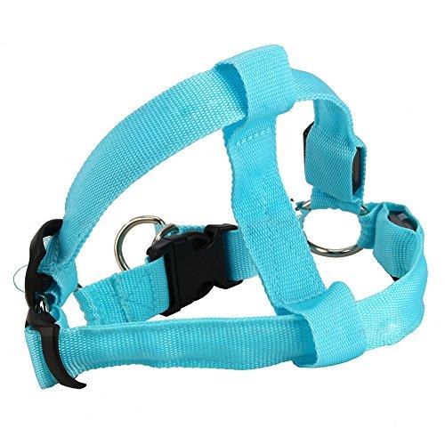 TAKE FANS Popular LED Glow Flash Perro Cinturón Arnés Correa Correa Mascota Iluminación Collar Azul M Durable