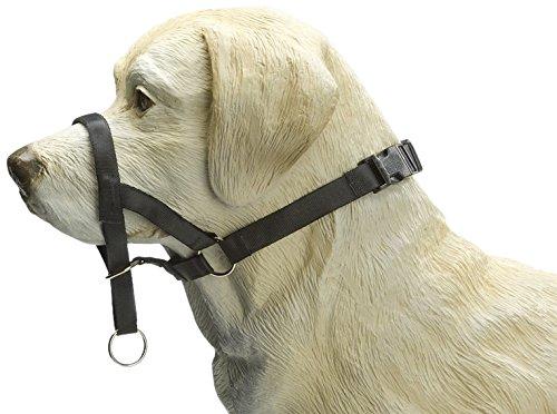 Beeztees correctieriehalsband voor honden, zwart, XL, 44 cm