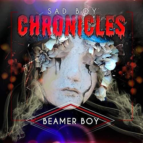 Sad Boy Chronicles