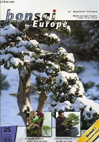 Bonsai Europe N°25 : Hotsumi Terakawa, atelier sur un pin blanc. Salvatore Lopirace travaille une myrte.