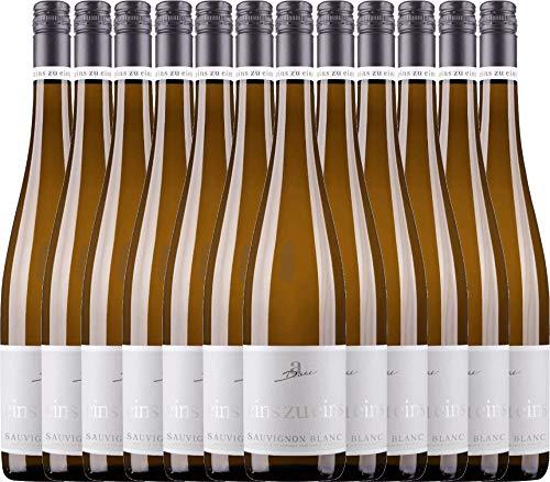 VINELLO 12er Weinpaket Weißwein - Sauvignon Blanc eins zu eins 2019 - A. Diehl mit Weinausgießer | veganer Weißwein | deutscher Sommerwein aus der Pfalz | 12 x 0,75 Liter