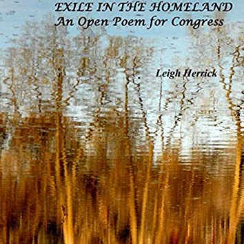 Exile in the Homeland: An Open Poem for Congress