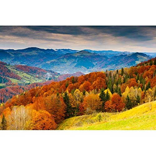 Fascinating Wooden Puzzle Landscape Of Swiss Autumn, Perfect Cut & Fit Basswood Jigsaw Puzzle For Adults & Kids, Boxed 500/1000/1500 Pieces Puzzles Game Toy Painting Art (Size : 1500pc)