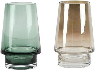 Flower Vases, Set of 2 Modern Decorative Vase Planters Containers Flower Pots for Hydroponics Plants Desktop Glass Planter...