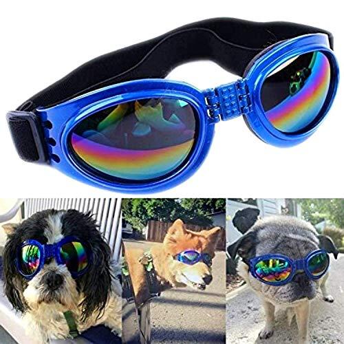 One PeTS-TOP - Gafas de perro, protección UV, luz polvo, correa ajustable, ideal para las vacaciones al mar, esquí, moto, bicicleta, evitan conjuntivitas, talla ajustable (azul)