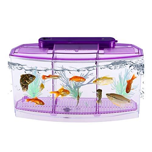 POPETPOP Mini Fish Tank Autopulente Desktop Mini Serbatoio di Pesci Rossi ecologici Quadrato rettangolo Svezzamento Piantine Acquario per Home Shop (Viola)