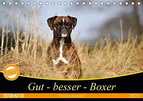 Gut - besser - Boxer (Tischkalender 2021 DIN A5 quer)