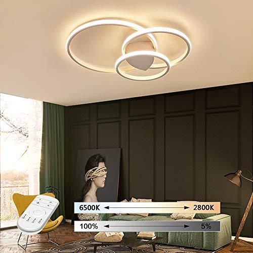 Hil plafondlamp, rond, voor slaapkamer, eenvoudige sfeer, creatieve persoonlijkheid, smeedijzer, dimbaar, ijzer 55 * 8CM Wit