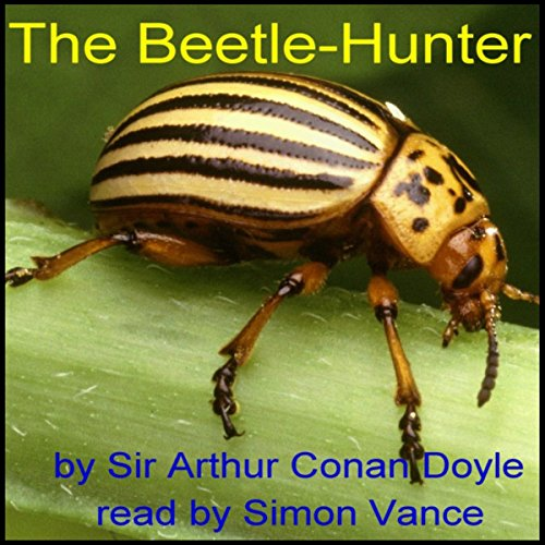 The Beetle-Hunter Titelbild