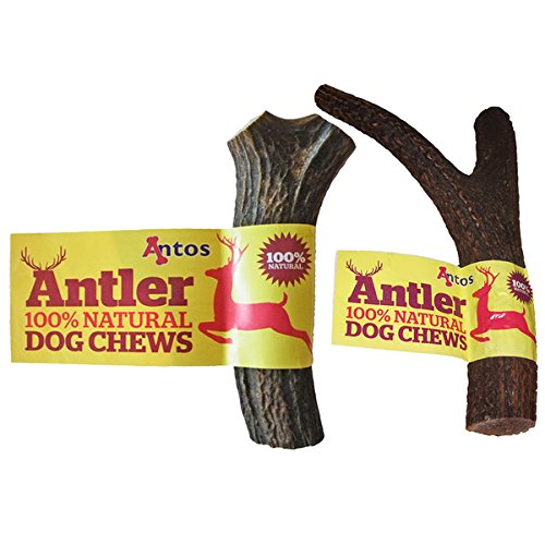 Antler Antos Dog Chews Large x 2 - Value Pack - Save!