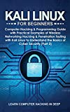 Kali Linux for Beginners: Computer Hacking & Programming Guide with Practical Examples of Wireless Networking Hacking & Penetration Testing with Kali ... the Basics of Cyber Security (Part 2)
