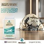 Best Paw Nutrition - Naturel calmant pour Les Chiens - Favorise Le comportement Calme - Aide Les Animaux domestiques à gérer Le Stress dans différentes Situations #2