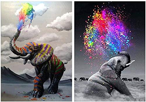 2 kit de pintura de diamantes 5D, incluyendo diamantes completos (por número), pinturas de lienzo para decoración de interiores, pinturas de diamantes de animales 30,5 x 40,6 cm (30 x 40 cm)