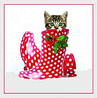 Puss In Boots Tabby Kitten Christmas Card Pack