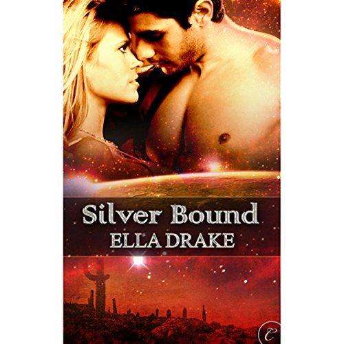 Silver Bound audiobook cover art