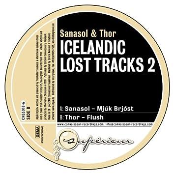 Icelandic Lost Tracks 2
