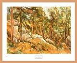 Paul Cezanne Poster Kunstdruck Bild Rocks in The Park of