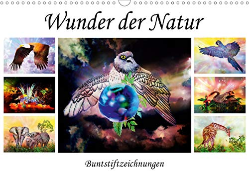 Wunder der Natur - Buntstiftzeichnungen (Wandkalender 2021 DIN A3 quer)