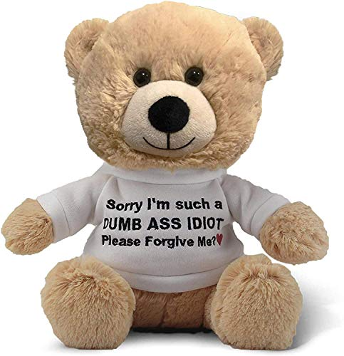 Cutest Sorry I'm Such A Dummy, Please Forgive Me (Beige) - 10 Inch Teddy Bear & Gift Bag - Funny Stuffed Animal Plush - Im Sorry Gift for Her, Im Sorry Gift for Him, Relationship Apology - Witty Bears